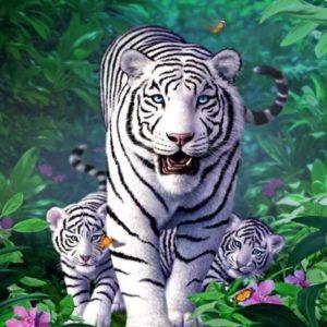 Puzzle Tigre Blanc Féroce