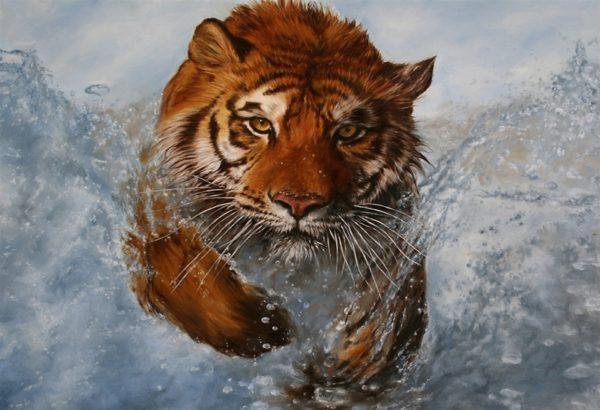 Puzzle Tigre Gros Félin