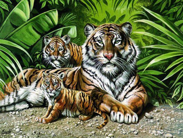 Puzzle Tigre Selfie Famille
