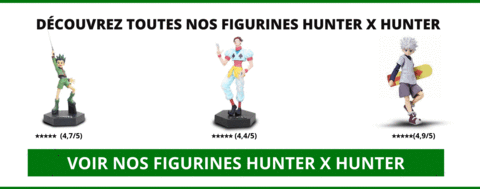Figurines Hunter x Hunter